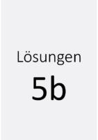 LSG-5b