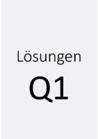 LSG-Q1